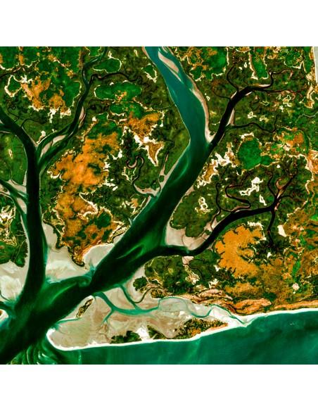 îles Guinée-Bissau